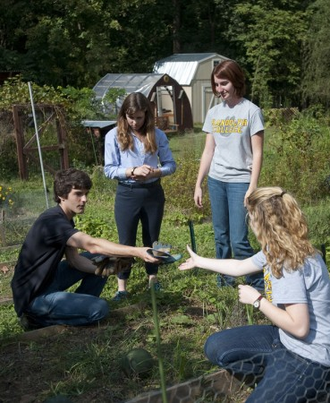 Students work in the Organic Garden.