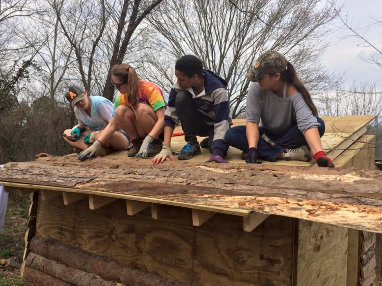 Students add a split log facing to the exterior of a tiger house.
