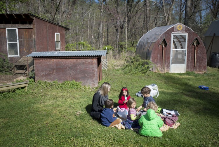"""Students in the """"5K"""" program at Randolph College Nursery School spend their morning outside in the organic garden on Wednesday. Photo by Jill Nance"""