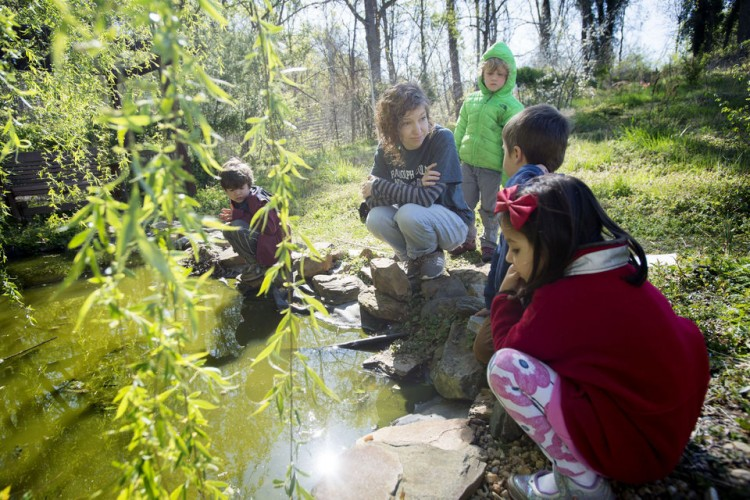 Students at Randolph Colllege Nursery School explore a pond inside the organic garden on the campus of Randolph College on Wednesday. Photo by Jill Nance