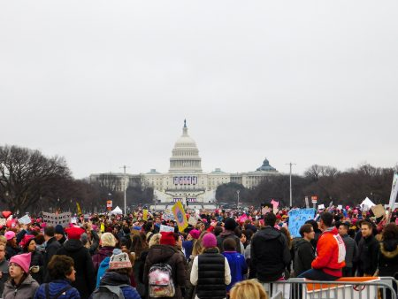 Womens March on Washington in January