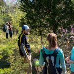 Students conduct research on trees and plant life in Natural Bridge State Park.