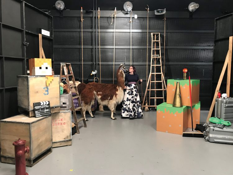 Norris pets a llama that was used during a video shoot for the intro sequence to MINECON Earth.