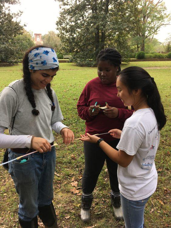 Students examine tree core samples
