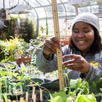 Jdody Misidor '21 works in the Randolph College greenhouse