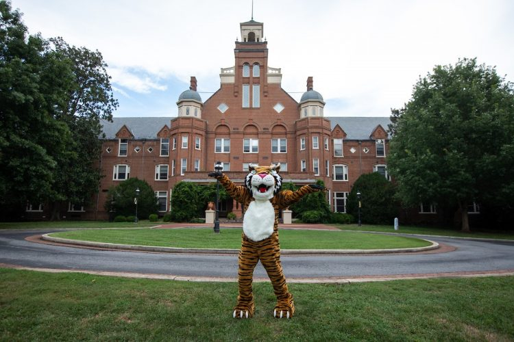 The new Wanda WildCat on front campus