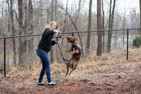 Zoe Waring bonds with a dog at the Lynchburg Humane Society