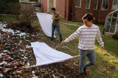 "Eynnar Claros Chacon and Allen Vaytser use their ""draggers"" to catch ticks on campus"