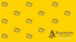 Randolph College - Be an Original - cat head pattern