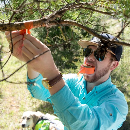 Randolph College students conduct a tree survey at Natural Bridge State Park