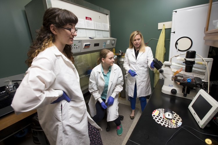 From left, Olivia Reed and Tetiana Poliakova work in a lab with biology professor Amanda Rumore.