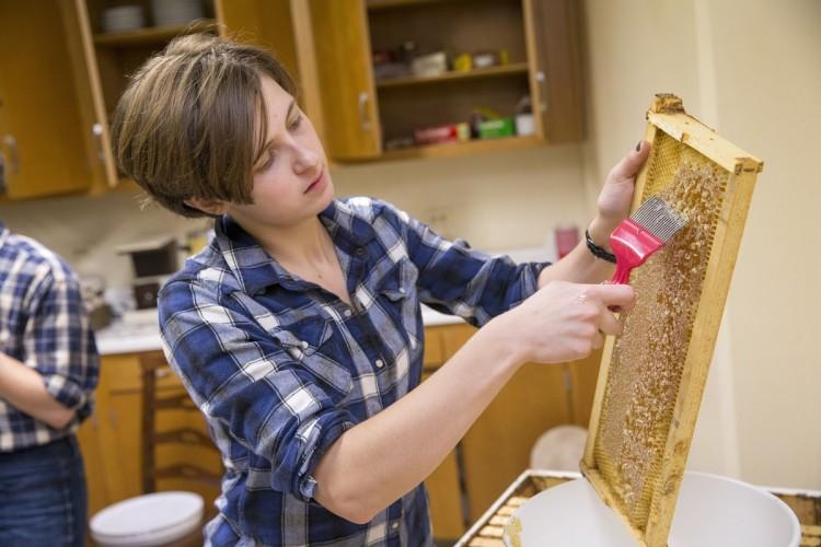 Sophia Dill '18 extracting honey
