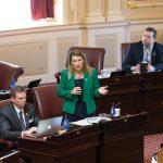 Siobhan Stolle Dunnavant '86 speaks on the Virginia Senate floor.
