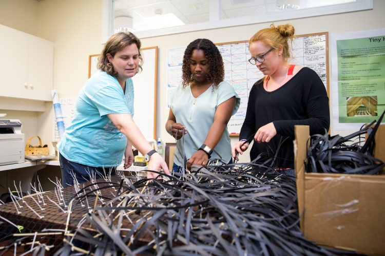 Physics and environmental studies professor Sarah Sojka, Tyrah Cobb-Davis '19, and Libby Exline '19 construct artificial seagrass