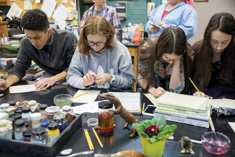 During a special workshop, Randolph students paint specimens from the College's Natural History Collection using materials similar to those Sydney Parkinson used in the 1700s.