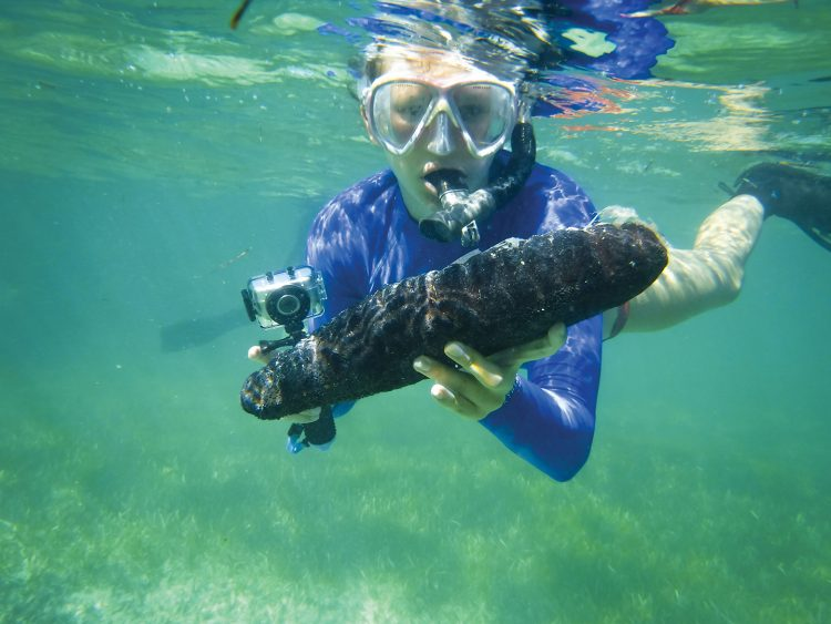 Lydia Edwards '19 examines a specimen during a scuba diving excursion in San Salvador.
