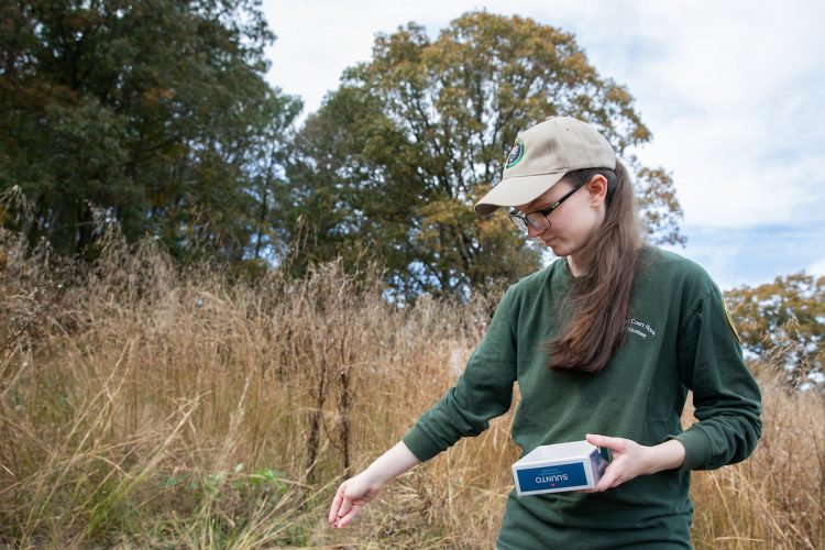 Andrea Wilson '20 plants seeds for milkweed—a required food source for Monarch butterflies in their larval stage.