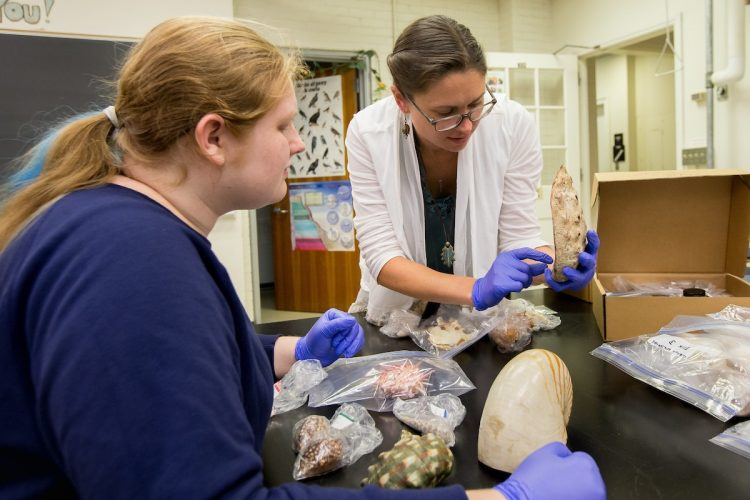 Cai Czuhai and Emily Smith examine fossils in the Natural History Collections lab at Randolph