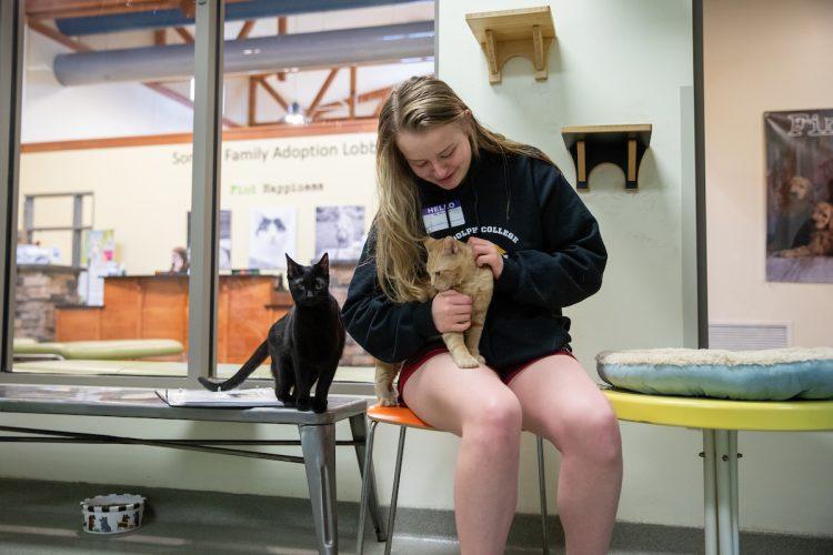 Hannah Overstreet pets cats at the Lynchburg Humane Society