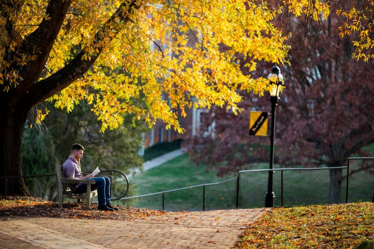 A student studies on a bench under fall colors on front campus
