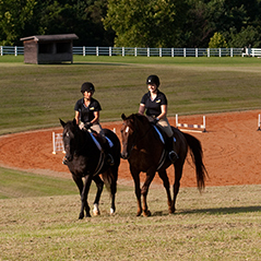 Horses and riders at the Randolph College Riding Center.
